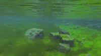 гидрокостюм для рыбалки в холодной воде
